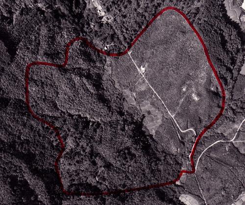 八木山南 空撮3.jpg