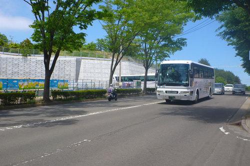 P1040459.jpg