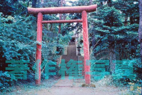 八木山小学校ファイル_0022-1.jpg