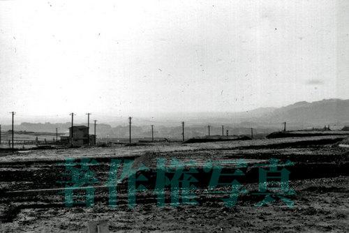 八木山本町一丁目より(1967_1.jpg