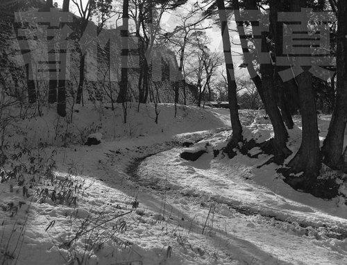 天守台道路19630209.jpg