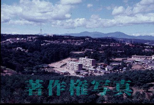 野草園より19630924[1].jpg